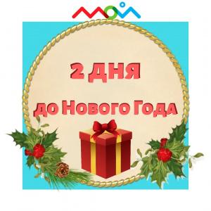 2 дня до нового года!